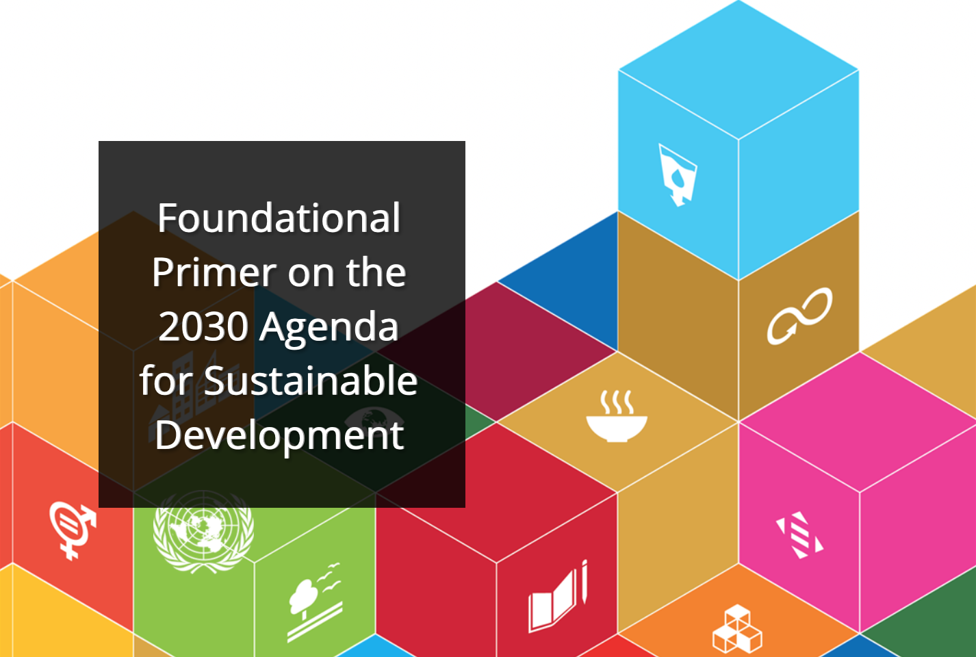 Cultivate your Curiosity: Foundational Primer on the 2030 Agenda for Sustainable Development (Course)
