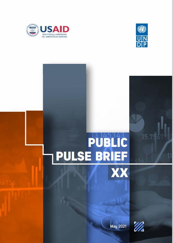 Public Pulse Brief XX